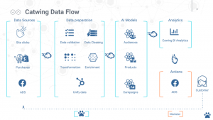 Catwing data flow